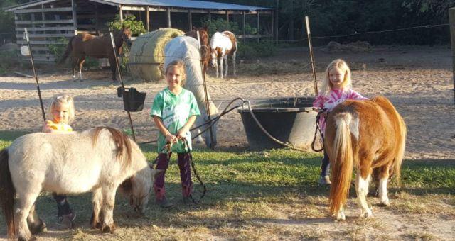 Training character through horseback riding
